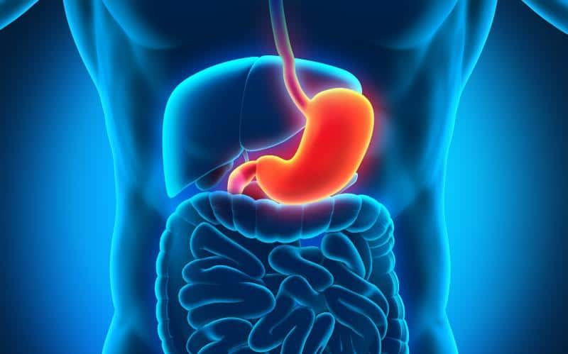 Symptoms, Treatment and Causes of Antral Gastritis #stomach #beverlyhills #beverlyhillsmagazine #bevhillsmag #health