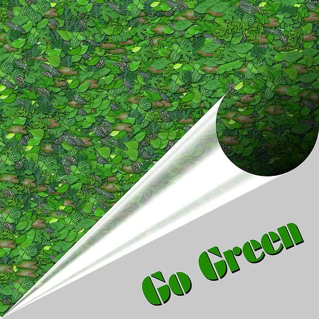 Tips For Your Business Go Green