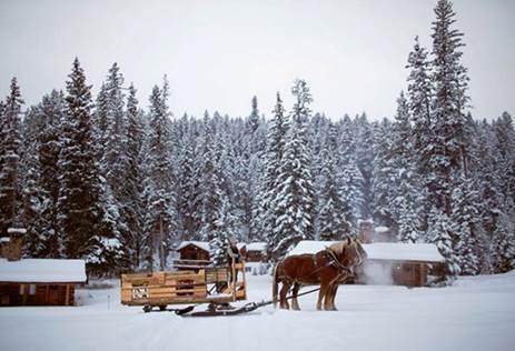 Lone Mountain Ranch #BigSky #montana #usa #exclusiveescapes #vacation #luxurylifestyle #travel #luxury #hotels #exclusive #getaway #destinations #resorts #beautiful #life #traveling #bucketlist #beverlyhills #BevHillsMag #cowgirls